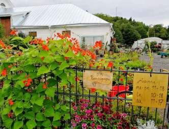 Puutarha Ruusupu